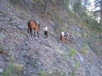 Faire du cheval en montagne