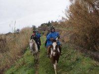 Randonnée nature à cheval