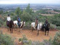 Le randonnée Equestre en Provence