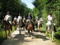 Randonnee equestre dans le Jura