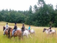 Randos et Balades a cheval