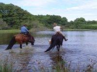 Randonnée Equestre Nievre