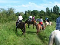 Une sortie à cheval en groupe
