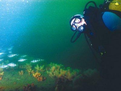 Pôle Plongée Normandie