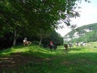 Balades a Cheval au coeur de la Dordogne avec la Ferme de Fonluc