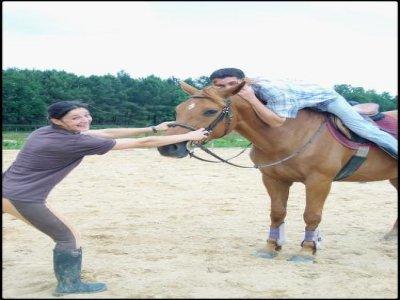 Ferme Equestre de Gueyte