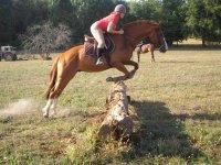 Cross Equestre a la Ferme de Gueyte