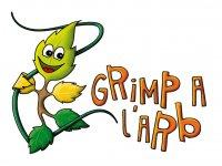 Grimp à l'Arb