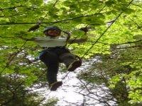 Une aventure forestière
