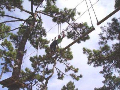 Forêt Sensations & Aventures