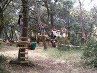 Parcours initiation dans les arbres