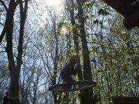 ateliers originaux dans les arbres