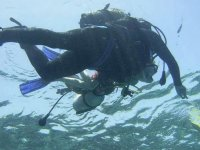 Premiere sortie plongee en milieu naturel