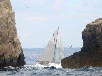 Visite des Calanques en voilier