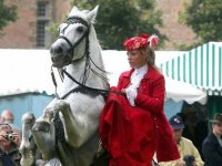 spectacle a cheval