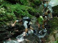 Randonnee de remontee de ruisseau