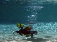 Plongee dans votre propre piscine