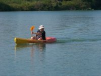 Faire du kayak en Camargue