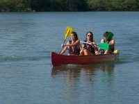 Sorties Canoe en Camargue