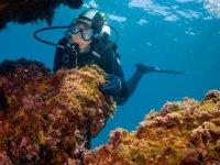 Plongée sous marine sur Marseille