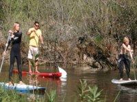 Promenade en paddle surf dans le bassin d Arcachon