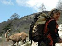 Randonnee en montagne a la rencontre des animaux