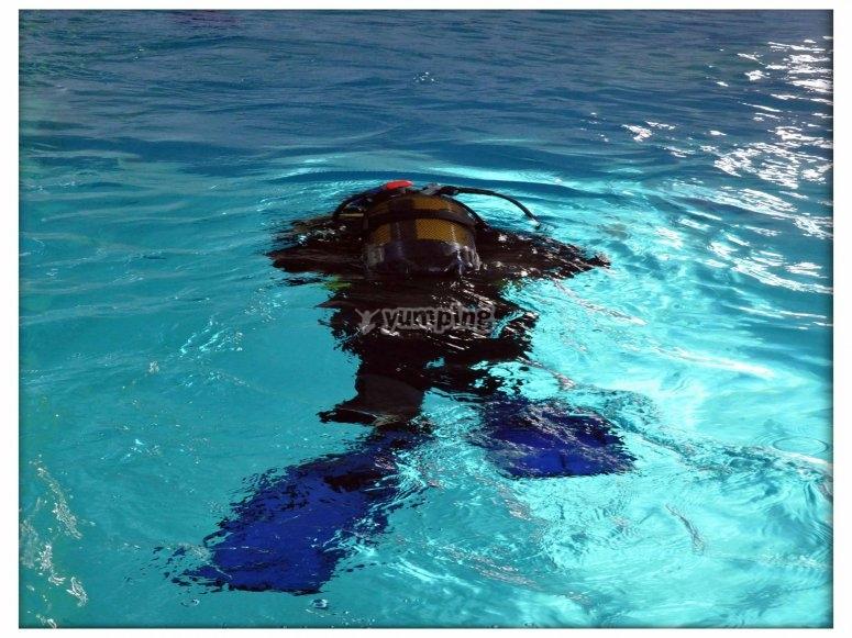 Plongeur Piscine