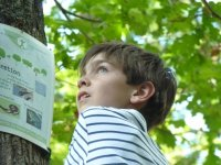 Course d orientation et connaissance de la nature