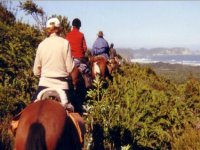 Sortie en montage a cheval