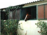 Centre Equestre en Dordogne