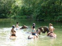 Petit bain en Dordogne a Cheval