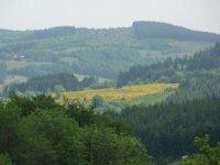 Vue sur des paysages panoramiques