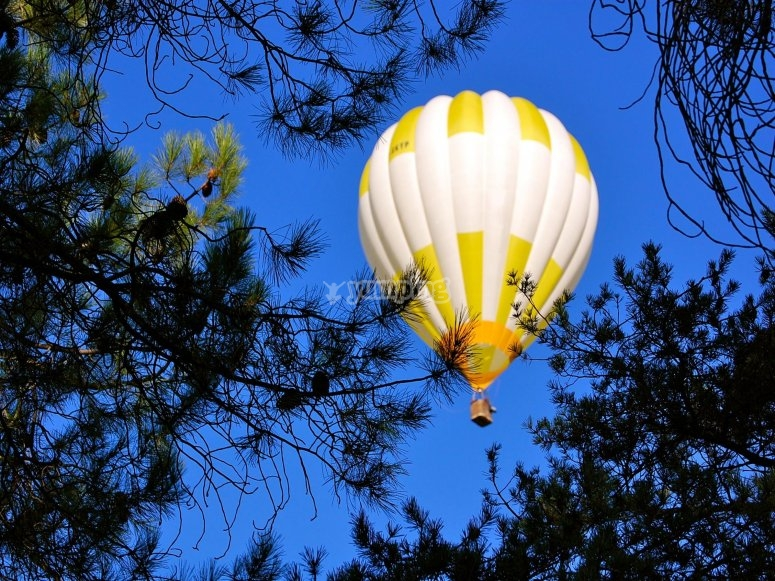Un vol inoubliable en ballon