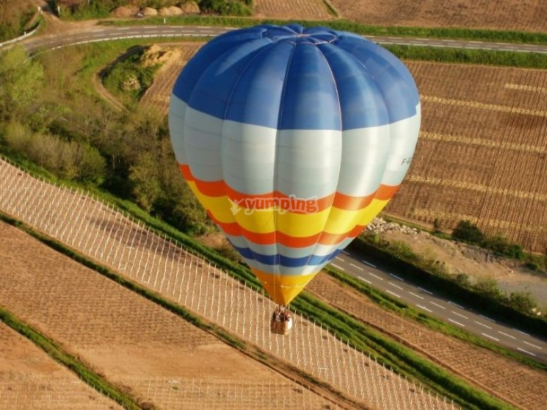 Survol du vignoble en montgolfiere