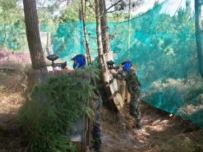 Paintball Forest