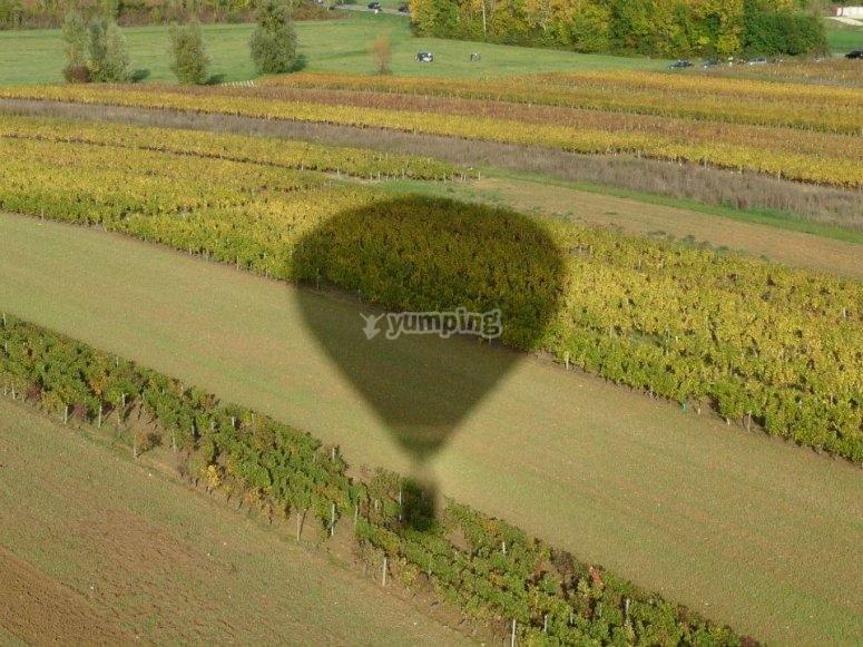 Chalon sur Saone en montgolfiere
