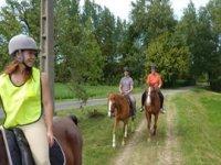 Balade a cheval au pas en Touraine