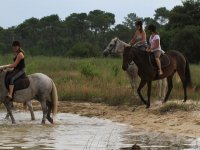 Balade a cheval au Lac de Biscarosse