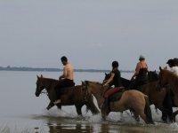 Sortie equestre Biscarosse