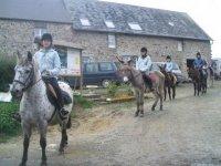 Anes et chevaux au centre de tourisme equestre