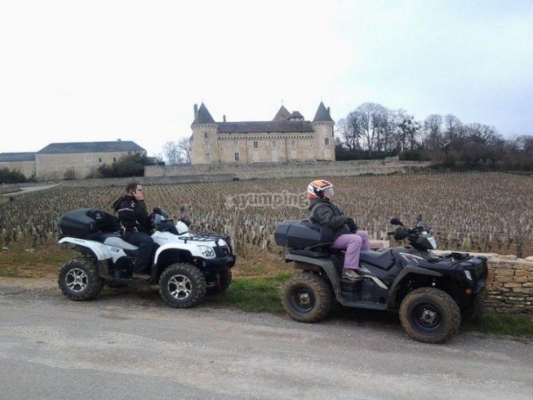 Découverte du domaine viticole en quad
