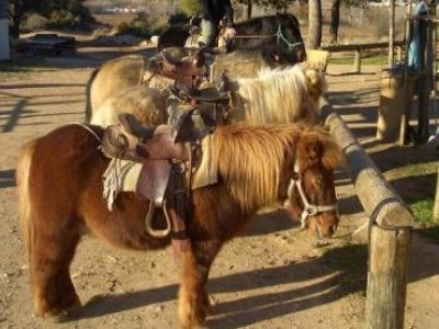Le Cabanon Enchanté Randonnées Équestres