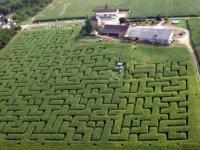 Labyrinthe dordogne