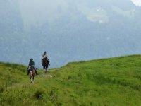 Equitation dans le parc naturel regional du Morvan