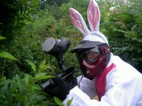 Chasseur lapin