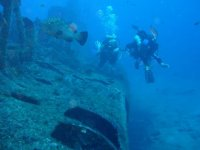 Sorties d exploration subaquatique organisee