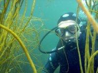 Ecole de plongée en Bretagne