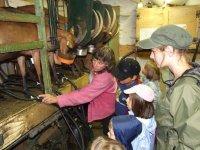 Visite d une fabrique de fromage