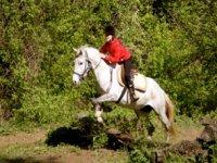 cours equitation dans le gard