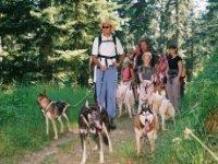 Partez faire du Mushing dans les Hautes Pyrenees